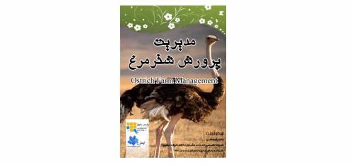 راهنمای کامل پرورش شتر مرغ